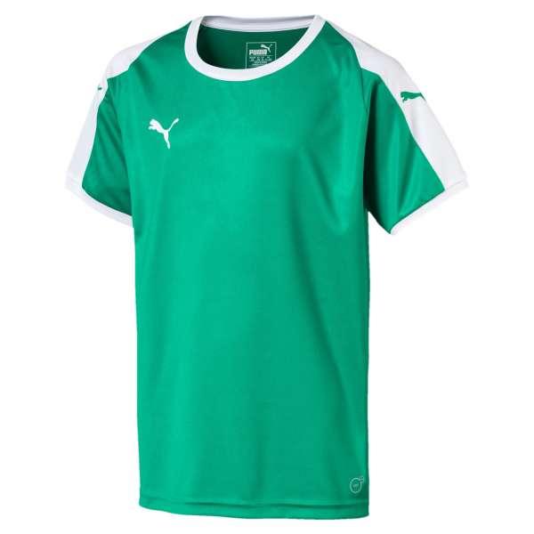 Puma Liga Jersey KIDS - grün
